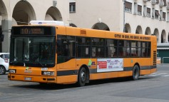 Vernacolo labronico a bordo dei bus