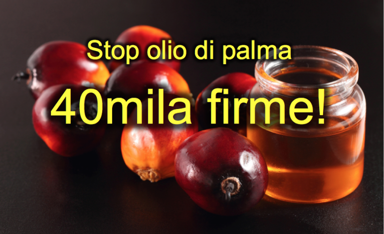 Prodotti all'olio di palma a rischio salute: Livorno in prima linea