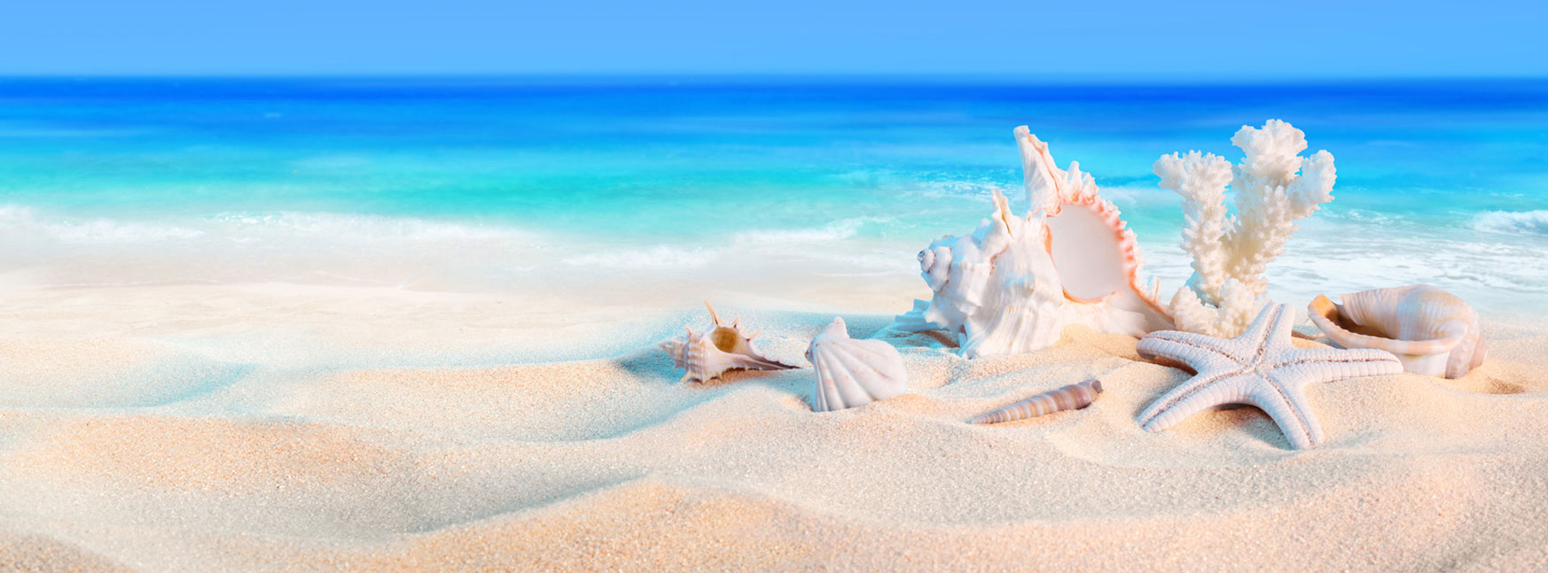 Green year la citta il mare gli stili di vita livorno 24 for Vacanze immagini
