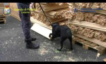 Sequestrati in porto17,5 kg di codeina (VIDEO)