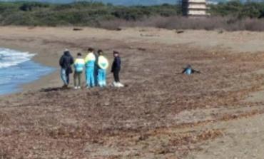 Identificato il cadavere rinvenuto sulla spiaggia di San Vincenzo