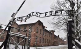 """Per non dimenticare l'olocausto: """"La memoria nei sopravvissuti"""""""