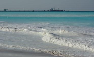 Moria di pesci alle spiagge bianche di Vada: in corso le analisi dell'Arpat