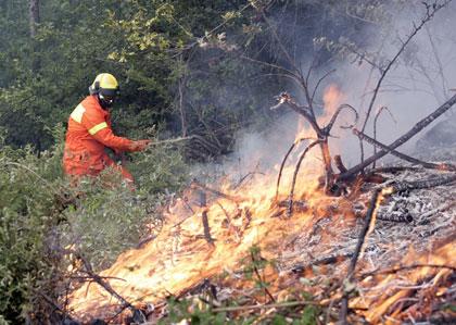 Incendi, posticipato al 15 settembre il divieto di accendere fuochi