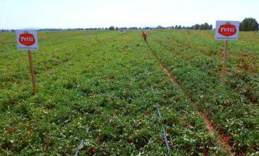 Venturina: 8 milioni per l'esportazione dell'agroalimentare