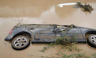 Alluvione: il WWF preoccupato dagli interventi di bonifica