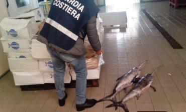 Operazione Nettuno: sanzioni e sequestri in tutta la regione