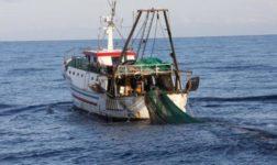 Progetto Arcipelago pulito. I pescherecci a pesca di plastica