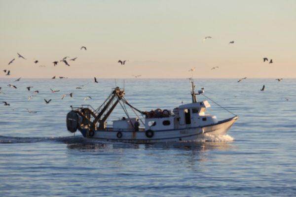 Morti bianche, Cgil: pescare non è un lavoro?