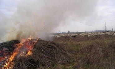 Nuovo incendio a Rosignano Marittimo
