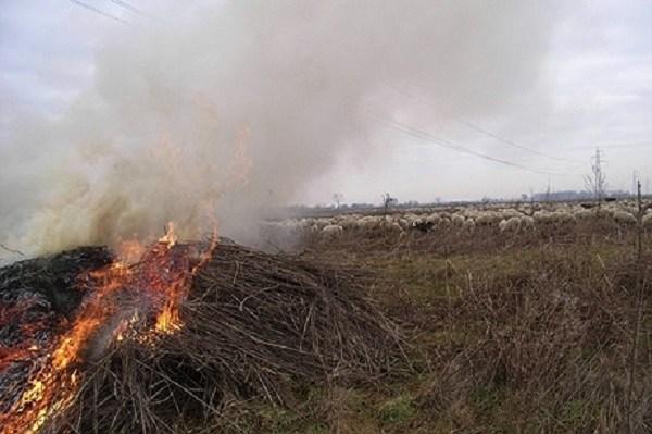 Vietato bruciare residui vegetali e accendere fuochi