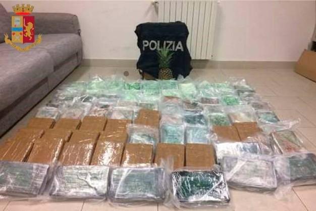 Cocaina tra gli ananas. Sgominato traffico internazionale