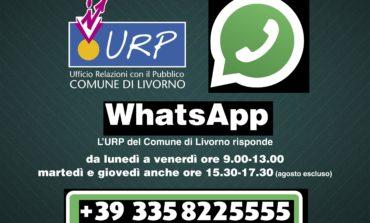 Al via il nuovo servizio WhatsApp del Comune