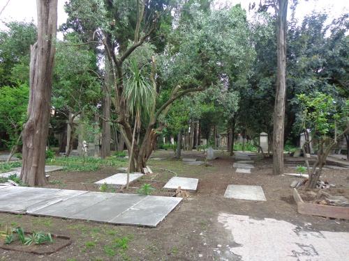 Crollo di alberi al cimitero olandese: ingenti i danni