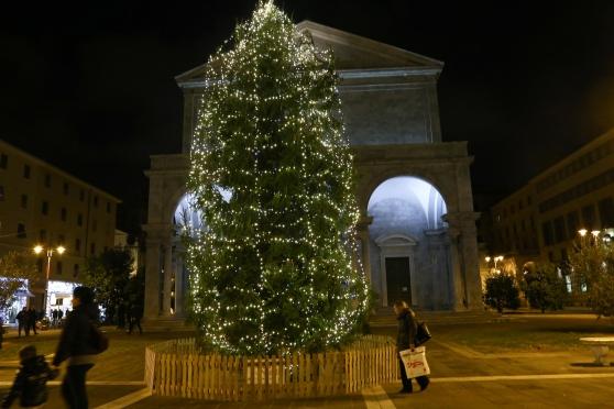 Albero Di Natale Grande.Acceso L Albero Di Natale In Piazza Grande Livorno 24