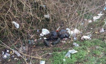 Panoramica: rimossi 8 tonnellate di rifiuti