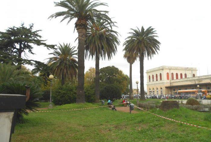Emergenza topi in piazza Dante, presidio di Comune e Aamps