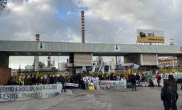 Fridays for Future: cortei e manifestazioni in città