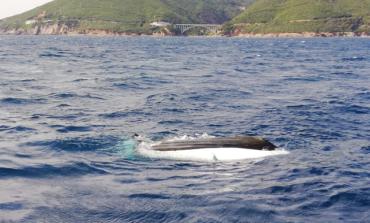 Calignaia: barca si rovescia, in salvo gli occupanti
